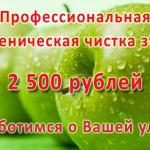 Профессиональная гигиеническая чистка зубов 1750 рублей